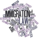 Word cloud for Immigration law