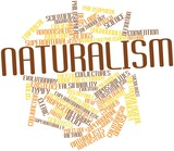 Word cloud for Naturalism