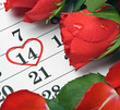 roses lay on the calendar with the date of February 14 Valentine
