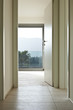 new empty apartment , long corridor