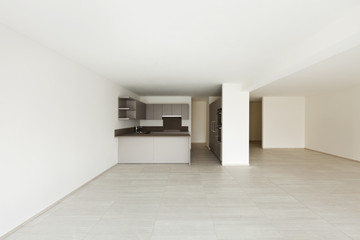 modern architecture, new empty apartment , kitchen