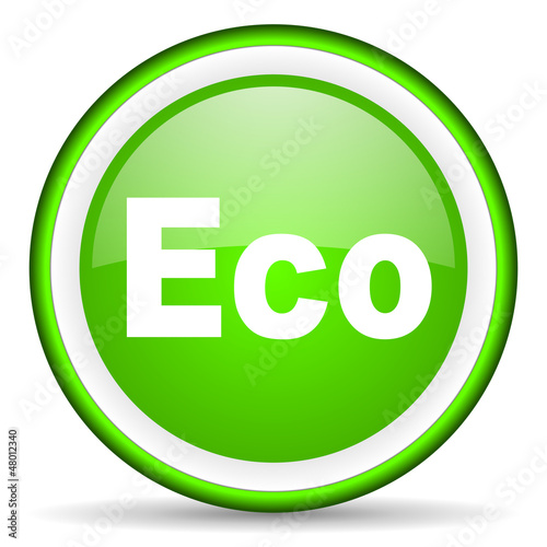 eco green glossy icon on white background