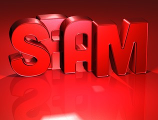3D Word Spam on red background