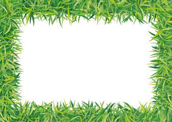 cornice d'erba