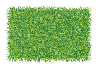 rettangolo d'erba