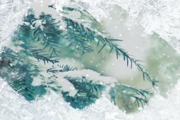 The frozen window