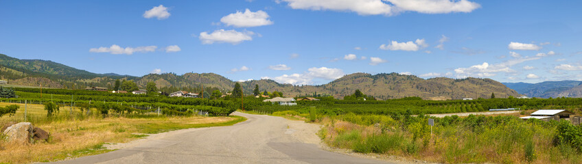 Winding road of Osoyoos Wine Valley