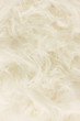White fur texture, close-up.Useful as background