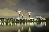 garden by the bay singapore - Fine Art prints