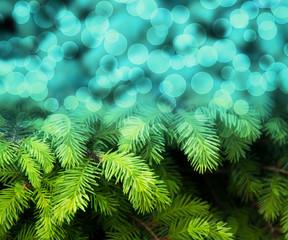 Christmas Fir Blue Abstract Background