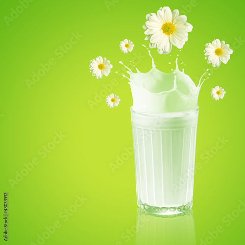 Fresh milk in the glass