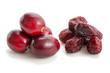 Frische und getrocknete Cranberries