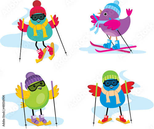 Skiing birds