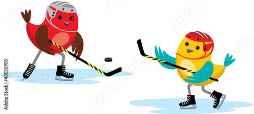 Birds play hockey