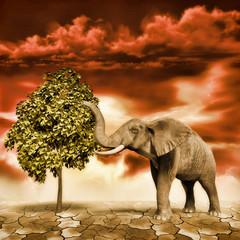 Elefante cerca de un árbol