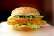 fast food - 48040577
