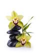Galets Noir et Orchidée