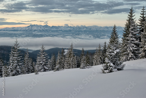 Tatra Mountains seen from Gorce Mountains
