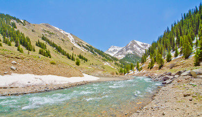 A Mountain Stream in the San Juan Mountains of Colorado