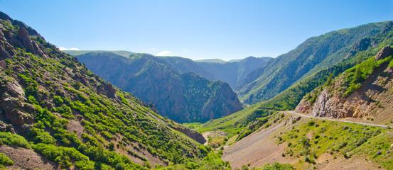 A Mountain Valley in the San Juan Mountains of Colorado