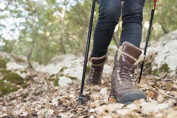 Nordic Walking details