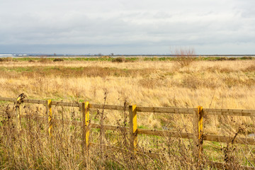 open_field_to_thames_estuary
