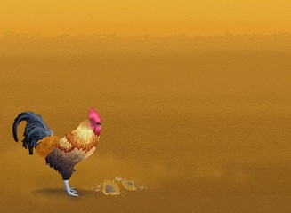 Beautiful Chicken Standing on Brown Sand with Copyspace