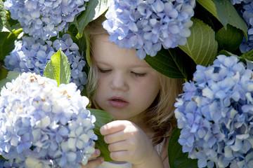 baby playing in purple chrysanthemum