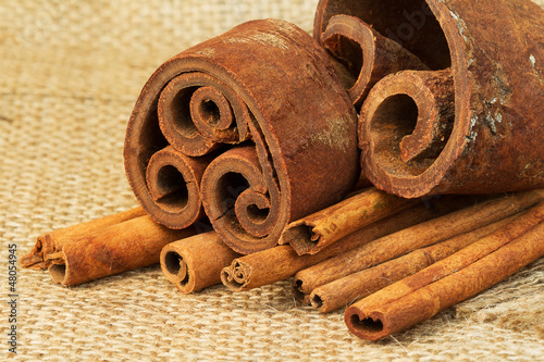 Cinnamon sticks on burlap