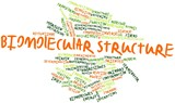 Word cloud for Biomolecular structure