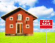"""FOR SALE"" sign against wooden house on beautiful meadow in back"
