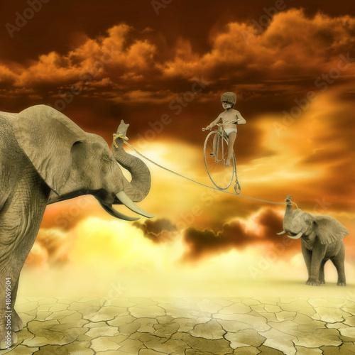 Fototapeten,mundo,elefant,katastrophe,show