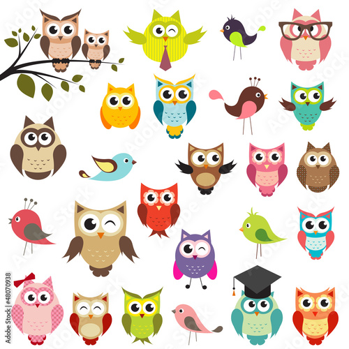 Fototapeta set of owls