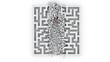 through the labyrinth, 3d animation (alpha-matte)