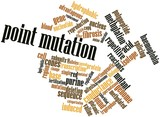 Word cloud for Point mutation