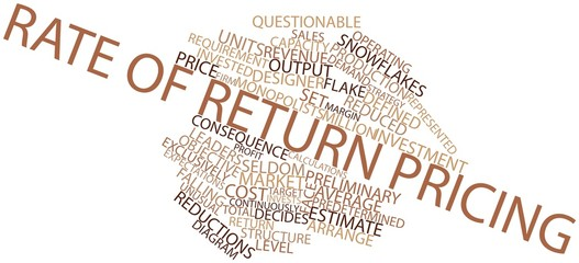 Word cloud for Rate of return pricing