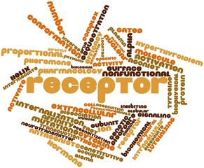 Word cloud for Receptor