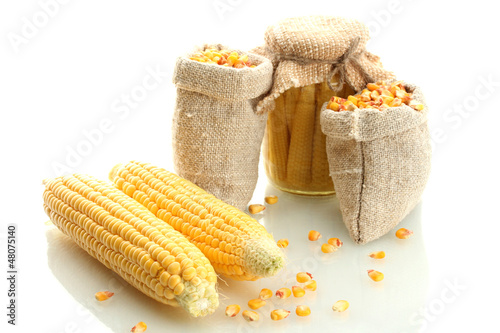 fresh corn and bags with dry corn, isolated on white