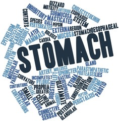 Word cloud for Stomach