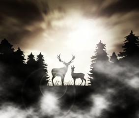 deers - old photo - forest in the mist
