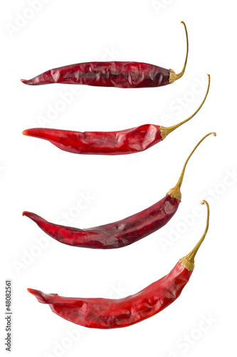 Puya Chili Peppers