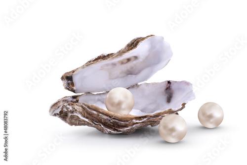Leinwandbild Motiv Huitre Perliere