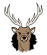 Deer draw