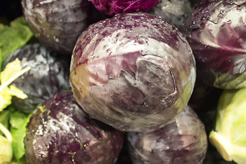 red cabbage at the market