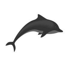 Dolphin isolated on white background, vector illustration
