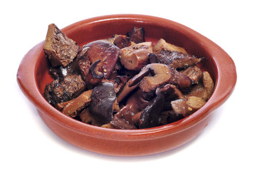 rovellons, typical autumn mushroom of Spain