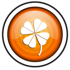 four-leaf clover orange glossy icon isolated on white background