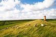 Leinwanddruck Bild - Pilsumer Leuchtturm Krummhörn Nordsee