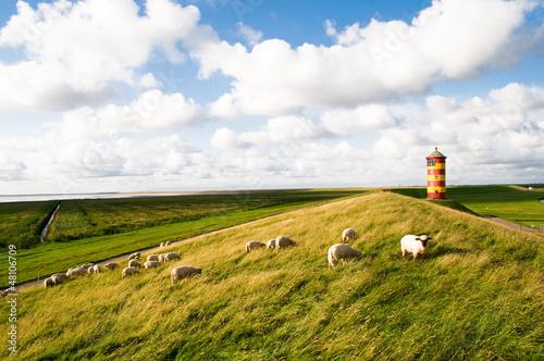 Pilsumer Leuchtturm Krummhörn Nordsee - 48106709