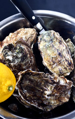 Oysters in a bowl with knife and lemon